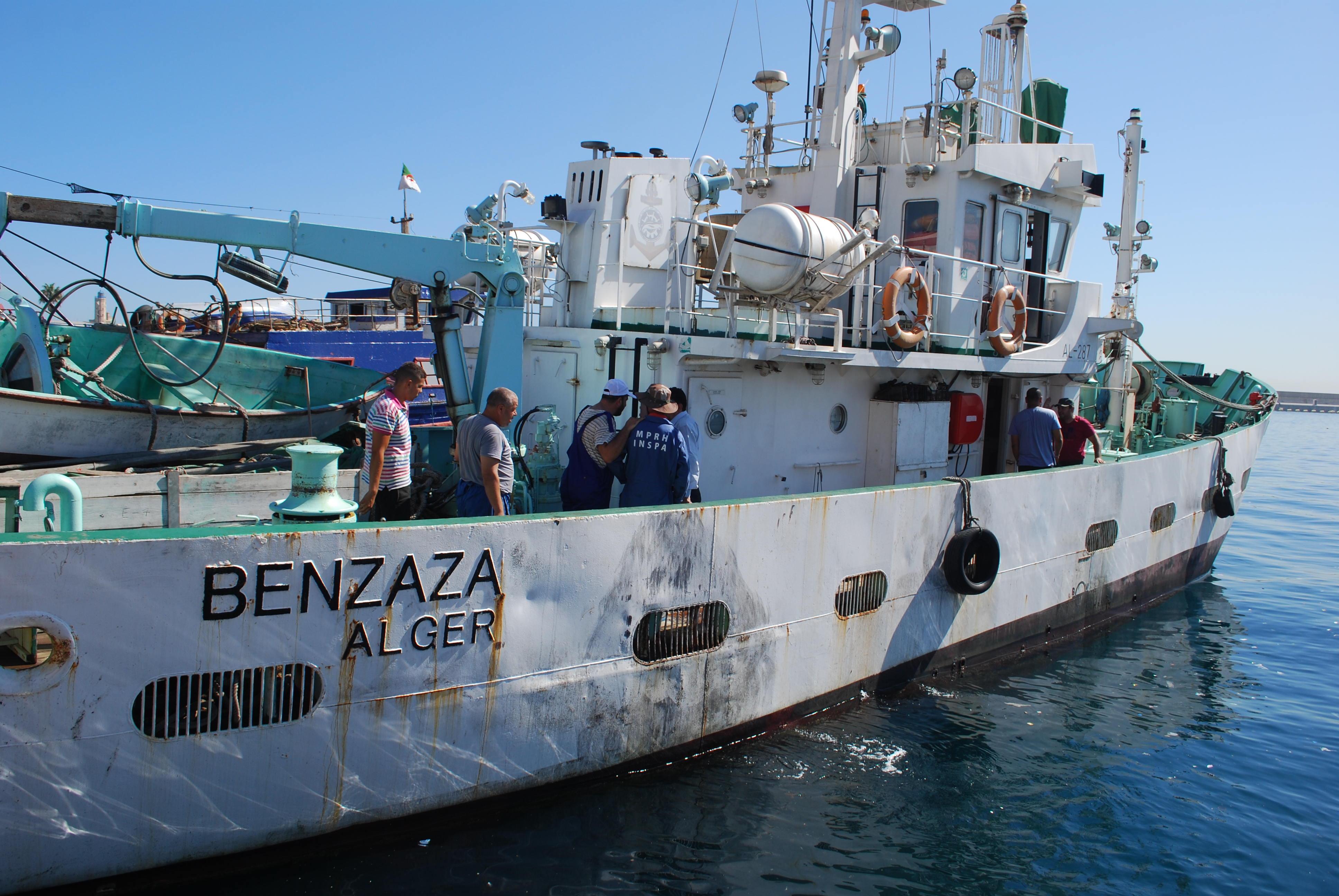 DIVICO II بن زازة في الساحل الغربي و